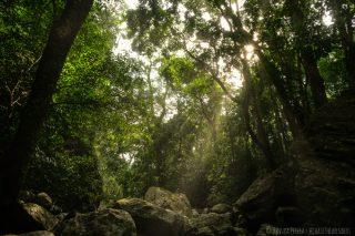 Sun Rays toucing ground at Ranamure